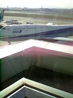 福岡空港の七番