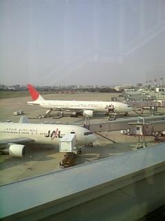 冬の福岡空港