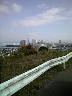 福岡タワーが