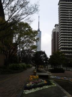 今日は福岡タワーの近くまで