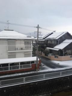 とうとう雪が…